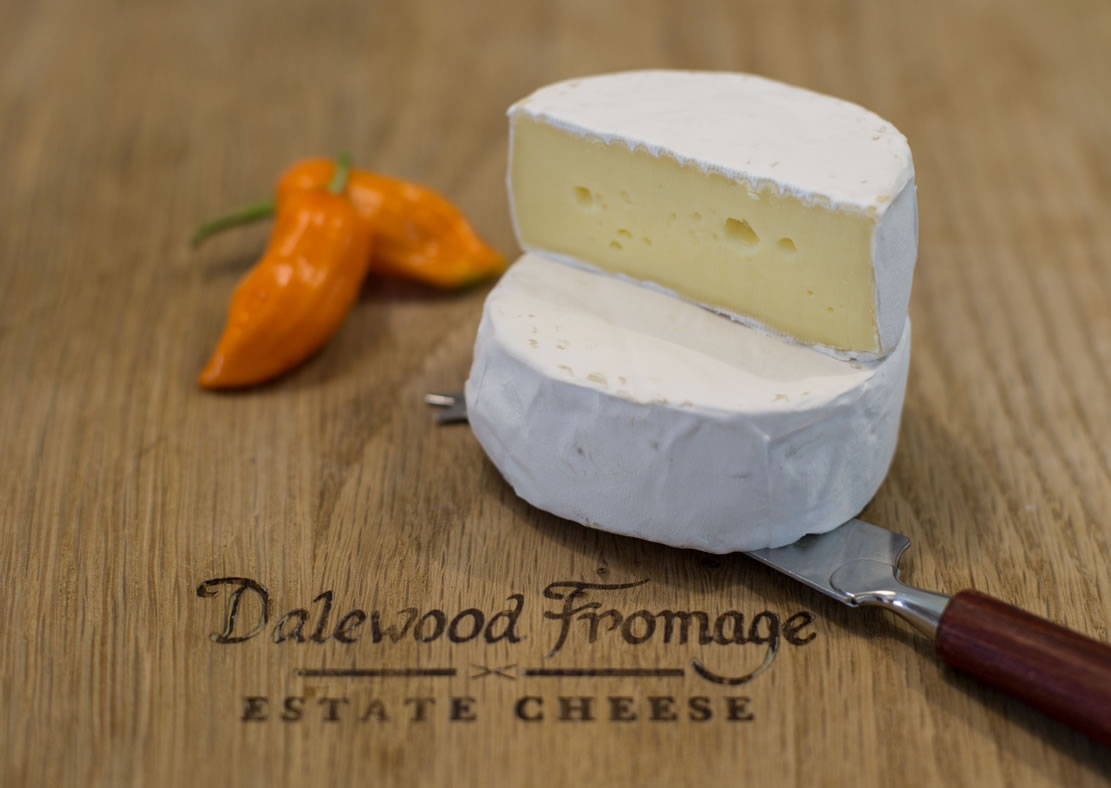 Dalewood Fromage Mini Wineland Camembert